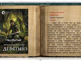 Скины (шкурки) для ICE Book Reader Professional Russian